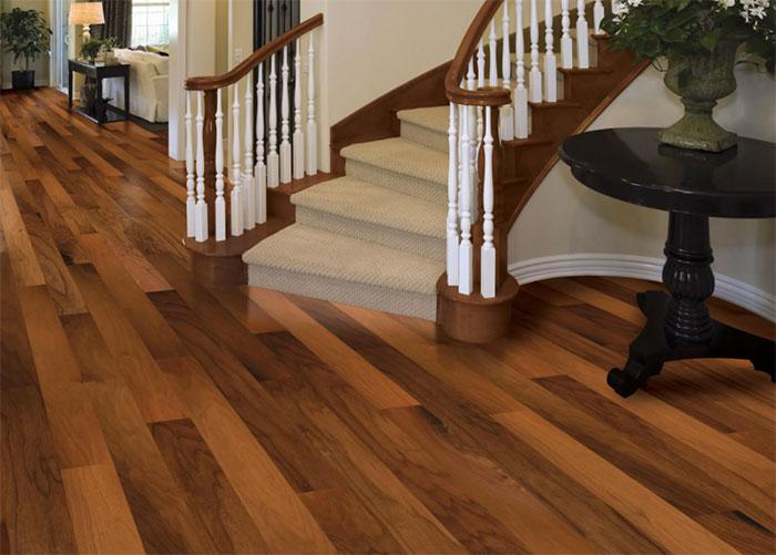 sàn gỗ Camsan nhập khẩu Bỉ