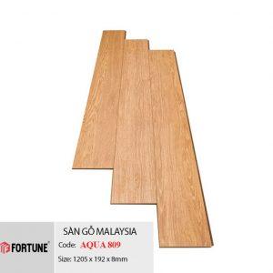 sàn gỗ fortune 809