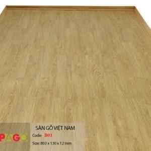 Sàn gỗ pago B01 hình 1