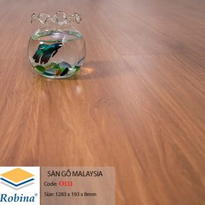 Robina O111