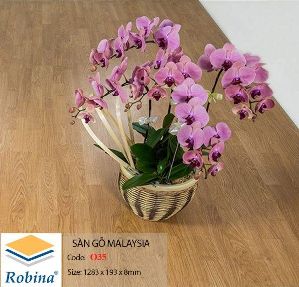ROBINA o35